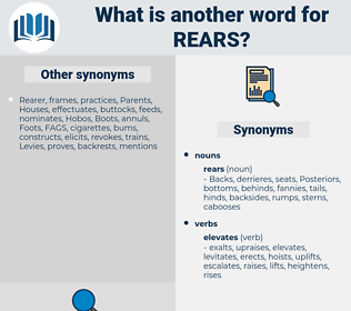 rears, synonym rears, another word for rears, words like rears, thesaurus rears