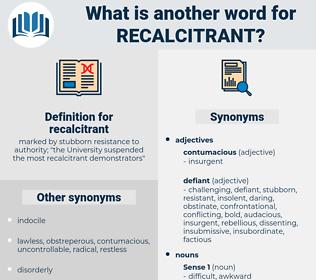 recalcitrant, synonym recalcitrant, another word for recalcitrant, words like recalcitrant, thesaurus recalcitrant