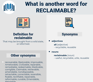 reclaimable, synonym reclaimable, another word for reclaimable, words like reclaimable, thesaurus reclaimable