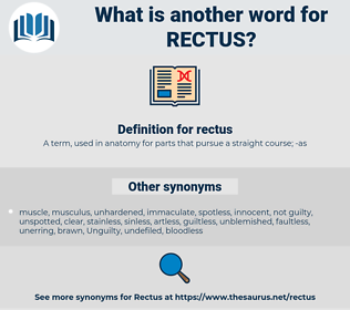 rectus, synonym rectus, another word for rectus, words like rectus, thesaurus rectus