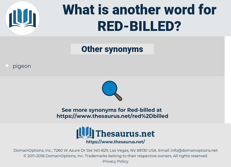 red-billed, synonym red-billed, another word for red-billed, words like red-billed, thesaurus red-billed