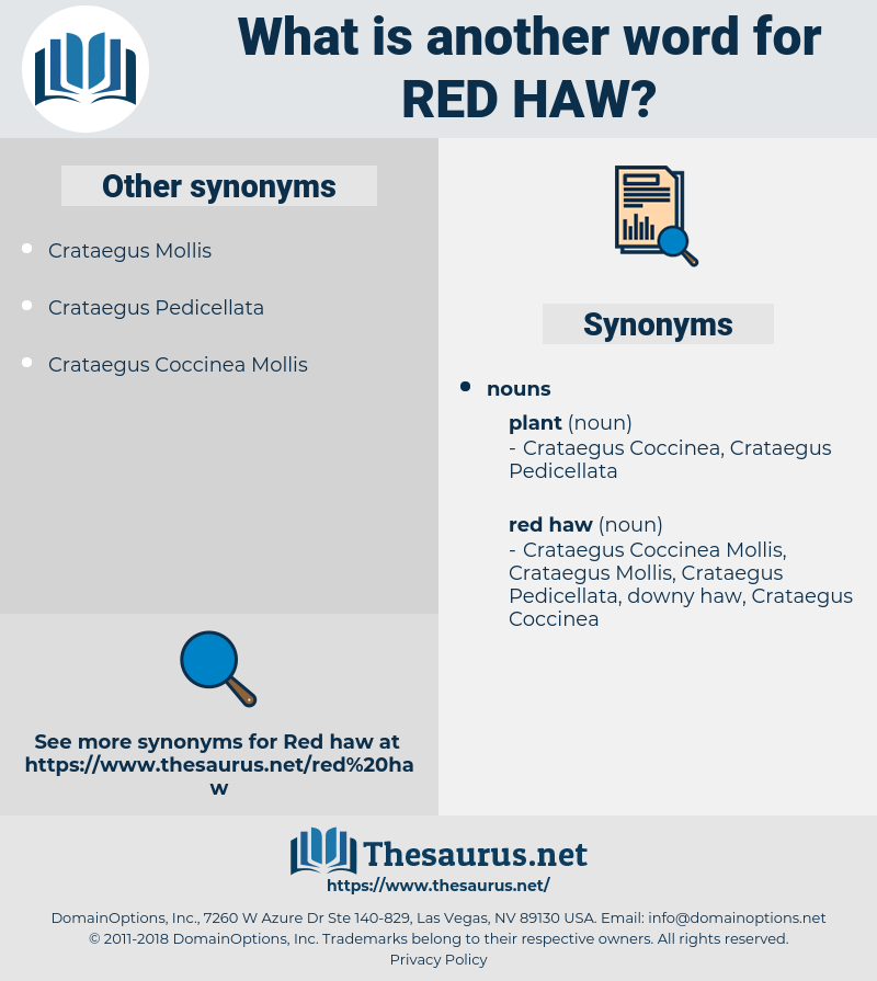red haw, synonym red haw, another word for red haw, words like red haw, thesaurus red haw
