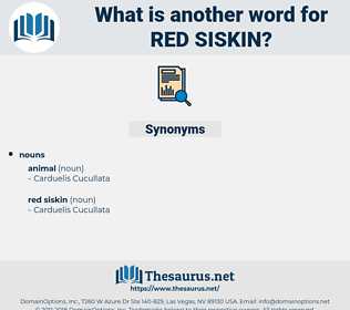 red siskin, synonym red siskin, another word for red siskin, words like red siskin, thesaurus red siskin