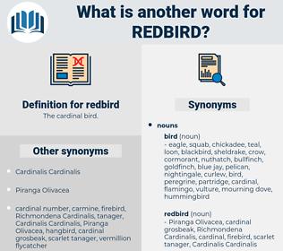 redbird, synonym redbird, another word for redbird, words like redbird, thesaurus redbird
