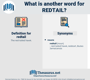redtail, synonym redtail, another word for redtail, words like redtail, thesaurus redtail