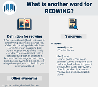 redwing, synonym redwing, another word for redwing, words like redwing, thesaurus redwing