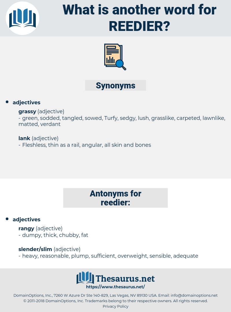 reedier, synonym reedier, another word for reedier, words like reedier, thesaurus reedier
