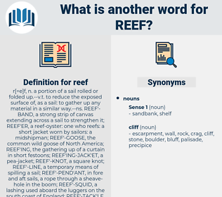 reef, synonym reef, another word for reef, words like reef, thesaurus reef