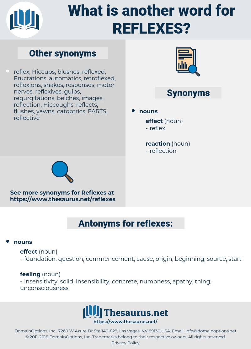 reflexes, synonym reflexes, another word for reflexes, words like reflexes, thesaurus reflexes
