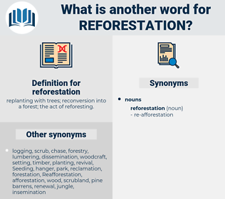 reforestation, synonym reforestation, another word for reforestation, words like reforestation, thesaurus reforestation