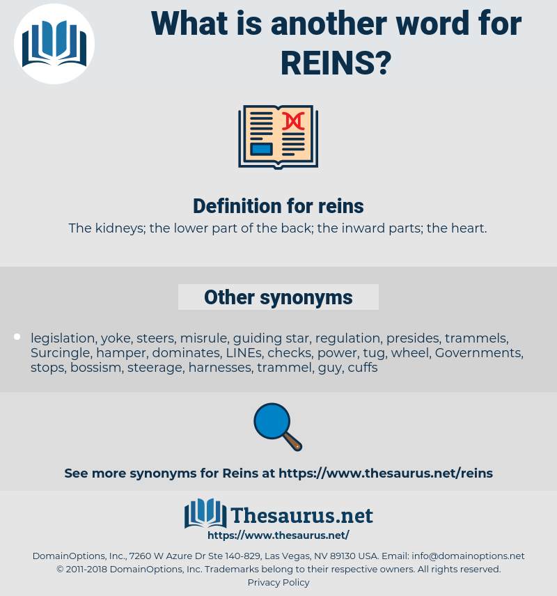 reins, synonym reins, another word for reins, words like reins, thesaurus reins