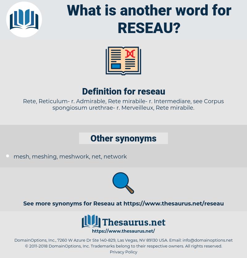 reseau, synonym reseau, another word for reseau, words like reseau, thesaurus reseau
