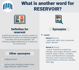 reservoir, synonym reservoir, another word for reservoir, words like reservoir, thesaurus reservoir
