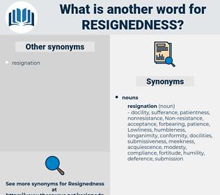 resignedness, synonym resignedness, another word for resignedness, words like resignedness, thesaurus resignedness
