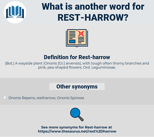 Rest-harrow, synonym Rest-harrow, another word for Rest-harrow, words like Rest-harrow, thesaurus Rest-harrow