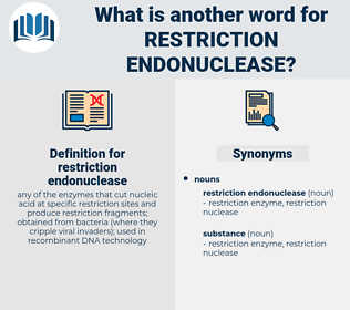 restriction endonuclease, synonym restriction endonuclease, another word for restriction endonuclease, words like restriction endonuclease, thesaurus restriction endonuclease