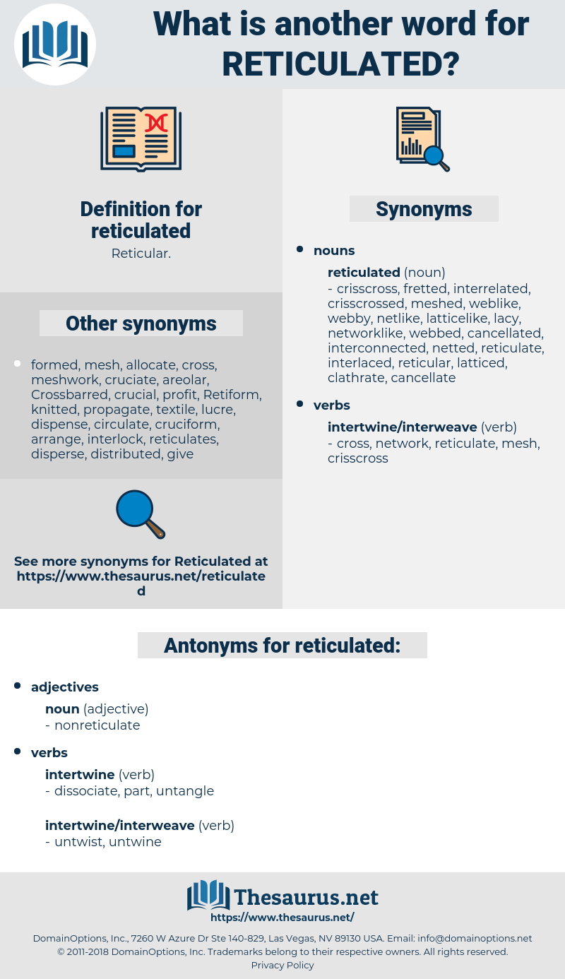 reticulated, synonym reticulated, another word for reticulated, words like reticulated, thesaurus reticulated