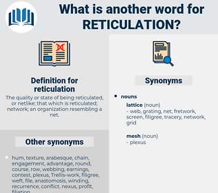 reticulation, synonym reticulation, another word for reticulation, words like reticulation, thesaurus reticulation