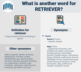 retriever, synonym retriever, another word for retriever, words like retriever, thesaurus retriever