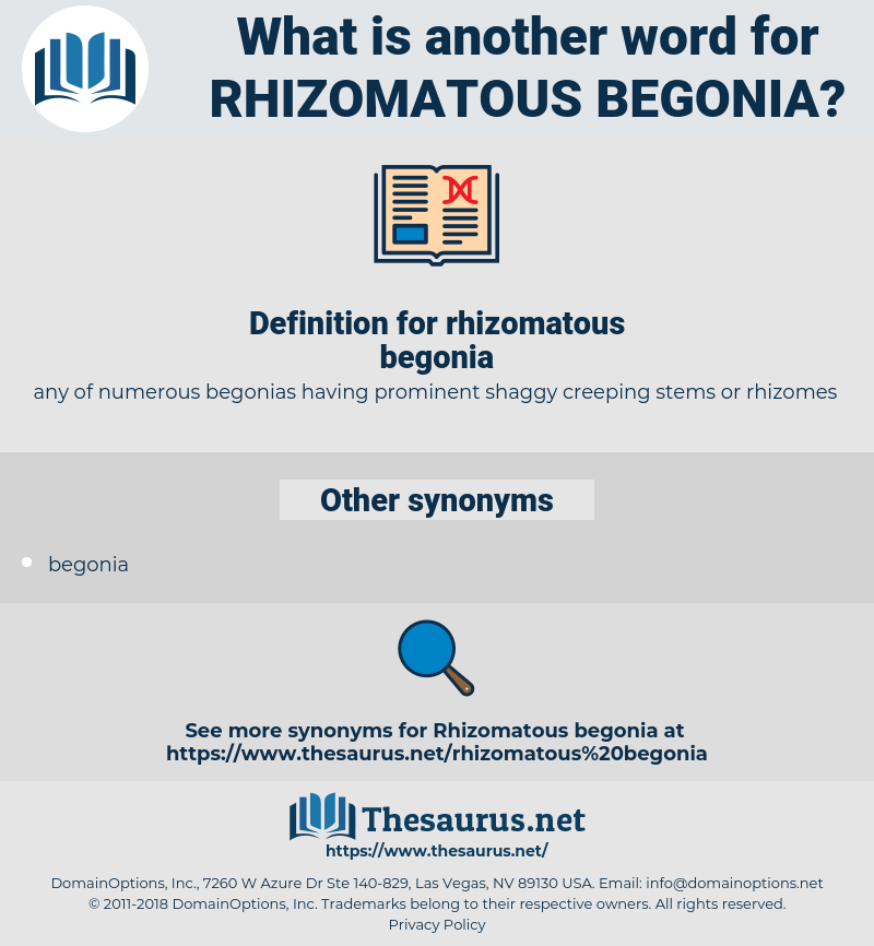 rhizomatous begonia, synonym rhizomatous begonia, another word for rhizomatous begonia, words like rhizomatous begonia, thesaurus rhizomatous begonia