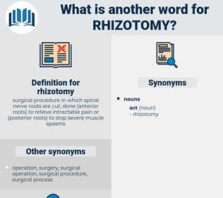 rhizotomy, synonym rhizotomy, another word for rhizotomy, words like rhizotomy, thesaurus rhizotomy