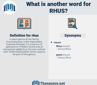 rhus, synonym rhus, another word for rhus, words like rhus, thesaurus rhus