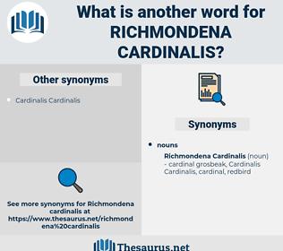 Richmondena Cardinalis, synonym Richmondena Cardinalis, another word for Richmondena Cardinalis, words like Richmondena Cardinalis, thesaurus Richmondena Cardinalis