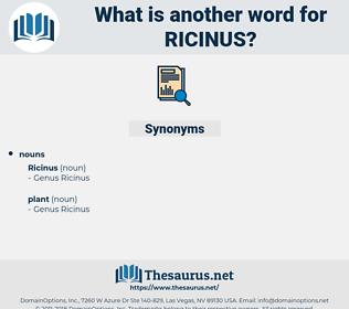 ricinus, synonym ricinus, another word for ricinus, words like ricinus, thesaurus ricinus