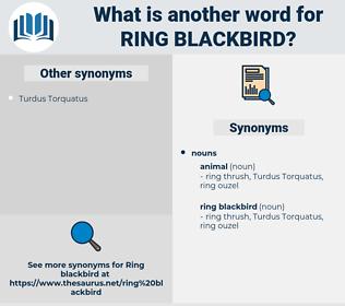 ring blackbird, synonym ring blackbird, another word for ring blackbird, words like ring blackbird, thesaurus ring blackbird