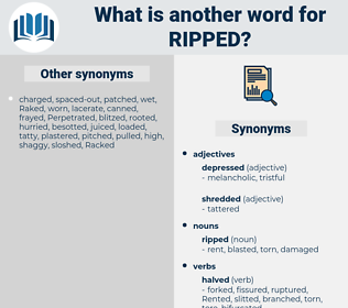 ripped, synonym ripped, another word for ripped, words like ripped, thesaurus ripped