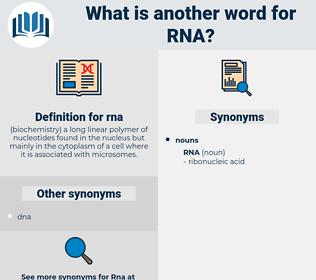 rna, synonym rna, another word for rna, words like rna, thesaurus rna
