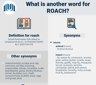 roach, synonym roach, another word for roach, words like roach, thesaurus roach