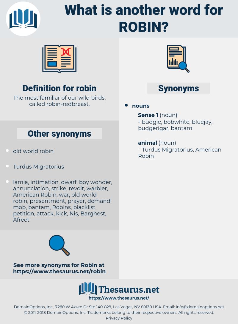 robin, synonym robin, another word for robin, words like robin, thesaurus robin