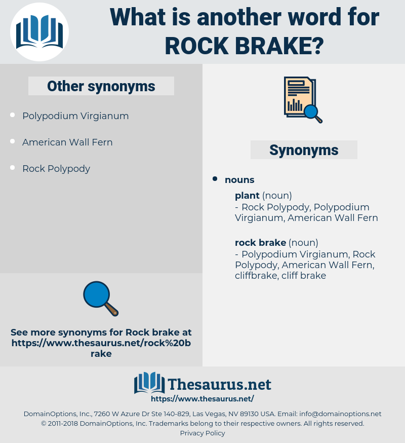 rock brake, synonym rock brake, another word for rock brake, words like rock brake, thesaurus rock brake