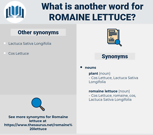 romaine lettuce, synonym romaine lettuce, another word for romaine lettuce, words like romaine lettuce, thesaurus romaine lettuce