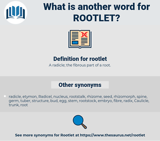 rootlet, synonym rootlet, another word for rootlet, words like rootlet, thesaurus rootlet