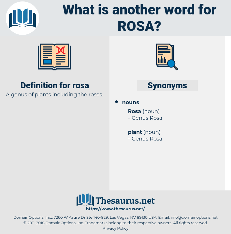 rosa, synonym rosa, another word for rosa, words like rosa, thesaurus rosa