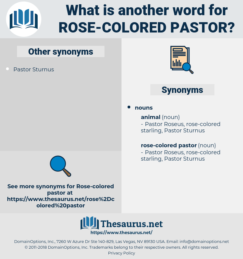 rose-colored pastor, synonym rose-colored pastor, another word for rose-colored pastor, words like rose-colored pastor, thesaurus rose-colored pastor
