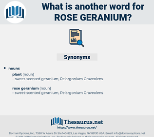 rose geranium, synonym rose geranium, another word for rose geranium, words like rose geranium, thesaurus rose geranium