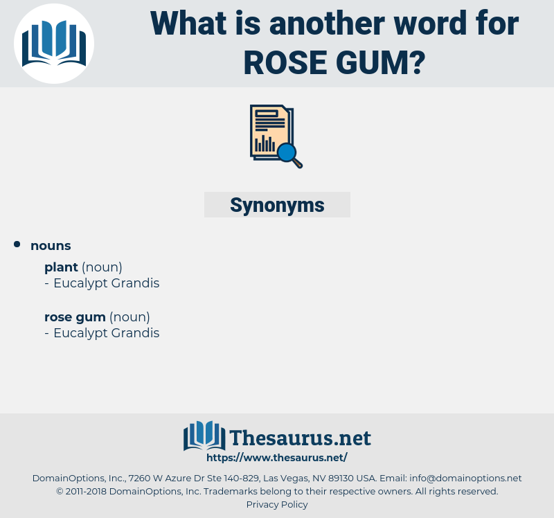 rose gum, synonym rose gum, another word for rose gum, words like rose gum, thesaurus rose gum
