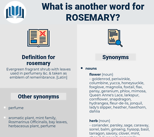 rosemary, synonym rosemary, another word for rosemary, words like rosemary, thesaurus rosemary