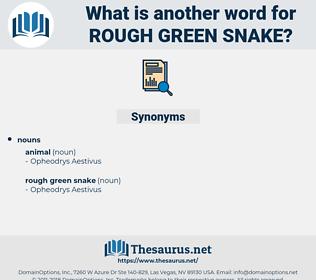 rough green snake, synonym rough green snake, another word for rough green snake, words like rough green snake, thesaurus rough green snake