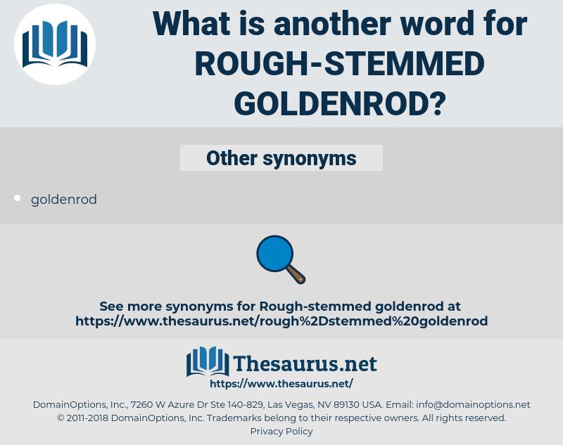 rough-stemmed goldenrod, synonym rough-stemmed goldenrod, another word for rough-stemmed goldenrod, words like rough-stemmed goldenrod, thesaurus rough-stemmed goldenrod