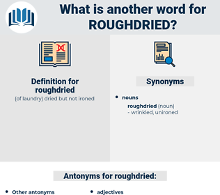 roughdried, synonym roughdried, another word for roughdried, words like roughdried, thesaurus roughdried
