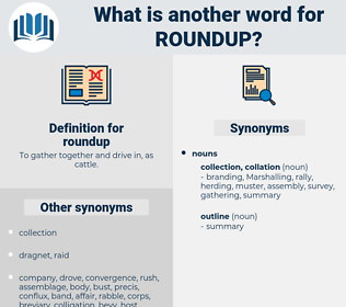 roundup, synonym roundup, another word for roundup, words like roundup, thesaurus roundup