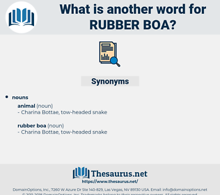 rubber boa, synonym rubber boa, another word for rubber boa, words like rubber boa, thesaurus rubber boa