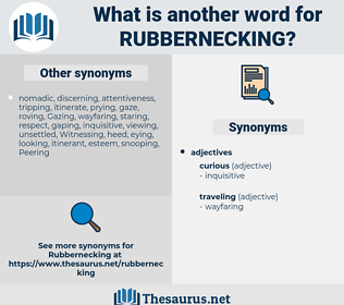 rubbernecking, synonym rubbernecking, another word for rubbernecking, words like rubbernecking, thesaurus rubbernecking