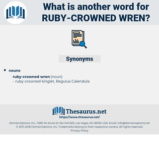 ruby-crowned wren, synonym ruby-crowned wren, another word for ruby-crowned wren, words like ruby-crowned wren, thesaurus ruby-crowned wren