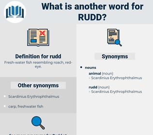 rudd, synonym rudd, another word for rudd, words like rudd, thesaurus rudd