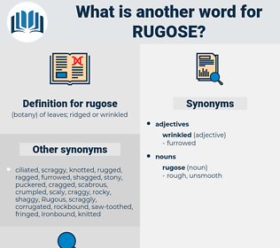 rugose, synonym rugose, another word for rugose, words like rugose, thesaurus rugose